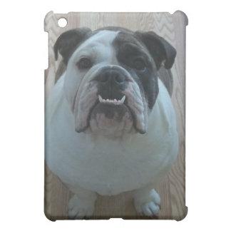 English Bulldogs ipad speck case Cover For The iPad Mini