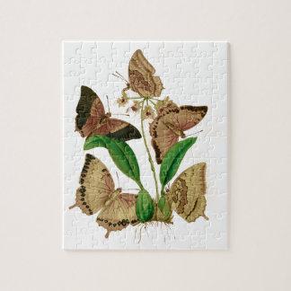 English Butterflies Jigsaw Puzzle