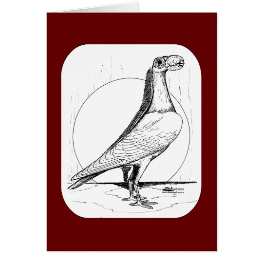 English Carrier Pigeon1978 Card