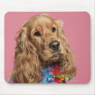 English Cocker Spaniel (10 months old) Mouse Pad