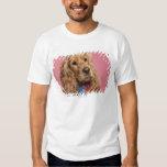 English Cocker Spaniel (10 months old) Shirt