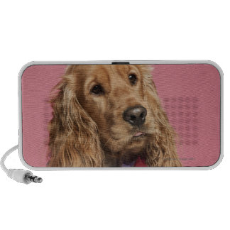 English Cocker Spaniel (10 months old) Mp3 Speakers