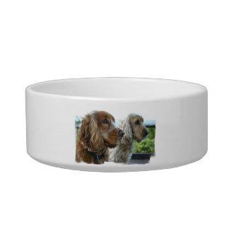 English Cocker Spaniel Pet Bowl