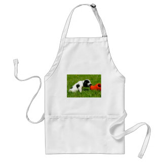 English Cocker Spaniel Puppy with Red Clog Adult Apron