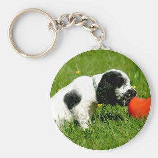 English Cocker Spaniel Puppy with Red Clog Basic Round Button Keychain