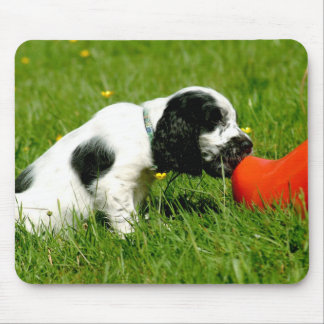 English Cocker Spaniel Puppy with Red Clog Mouse Pad