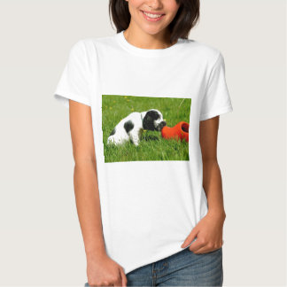 English Cocker Spaniel Puppy with red clog T Shirt