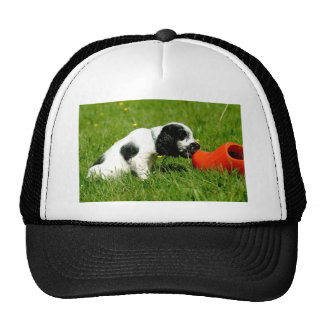 English Cocker Spaniel Puppy with red clog Trucker Hat