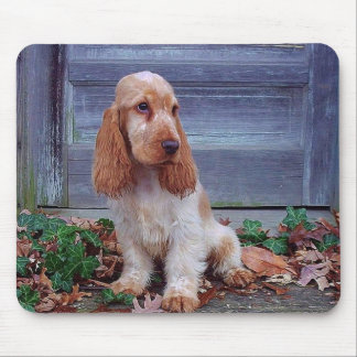 English Cocker Spaniels Mouse Pad