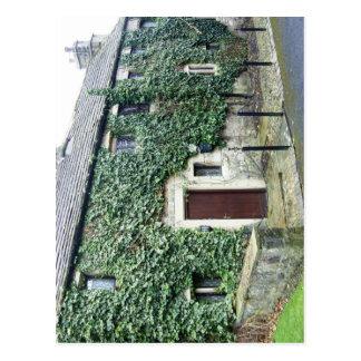 English Cottage Postcard