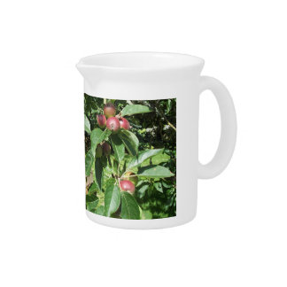 English country garden beverage pitchers
