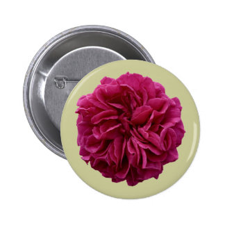 English Country Garden Frilly Red Rose Pinback Button