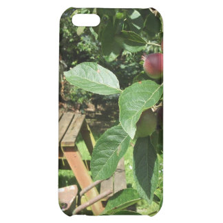 English country garden iPhone 5C cover