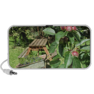 English country garden mini speakers