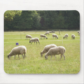 English Countryside Pictures Mouse Pad