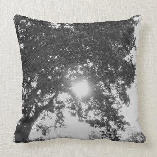 English countryside sun through a tree pillow