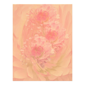 English Daisy Peach Colored Floral Abstract Letterhead