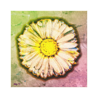 English Daisy ~ Pretty Pop Art by Aleta Canvas Print