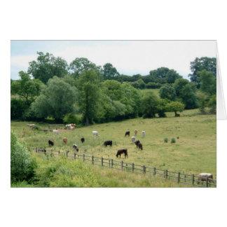English Farmland Card