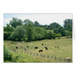 English Farmland Greeting Card