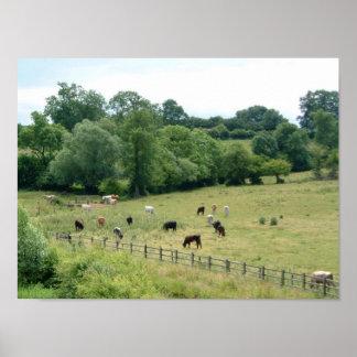 English Farmland Poster
