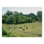 English Farmland Print