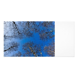 English Forest Art Card