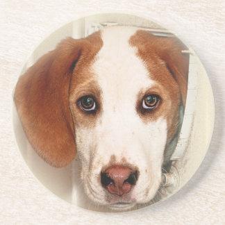 English Foxhound Soapstone Coaster