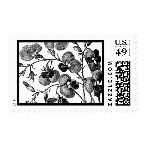 English Garden A by Ceci New York Postage