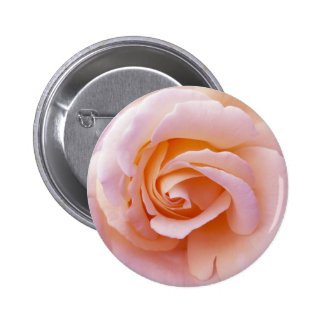 English Garden Peach and Pink Rose Pin