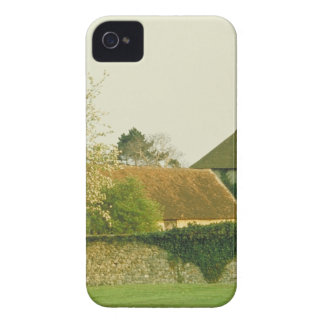 English gardens iPhone 4 cover