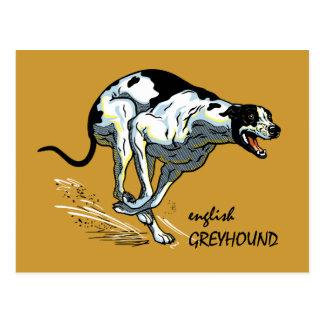 english greyhound postcard