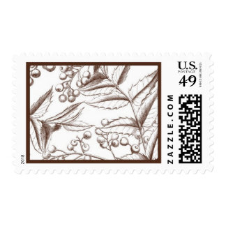 English Holly A by Ceci New York Postage Stamps