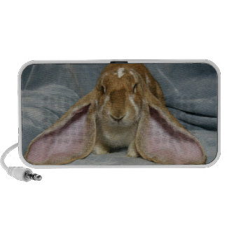 English Lop Bunny Rabbit Speaker for phone/tablet