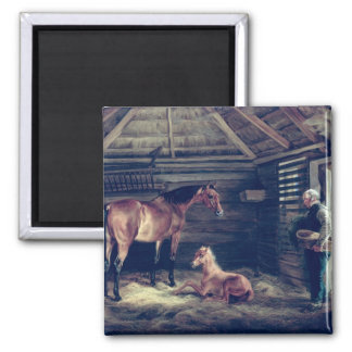 English Mare With Her Foals, 1833 Magnet