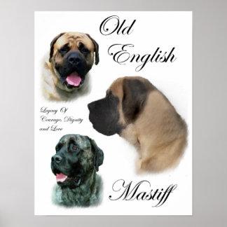 English Mastiff Art Prints