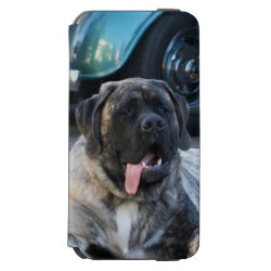 Incipio Watson™ iPhone 6 Wallet Case with Mastiff Phone Cases design
