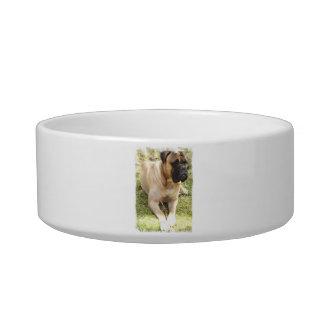 English Mastiff Pet Bowl