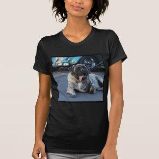 English Mastiff Shirt