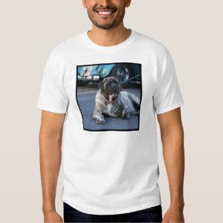English Mastiff T Shirt