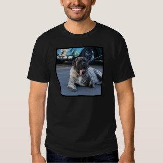 English Mastiff Tee Shirt