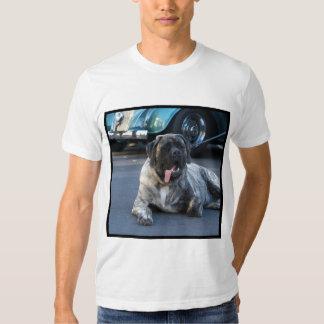 English MastiffT-shirt Shirt