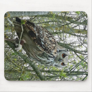 English owl in tree mouse pad