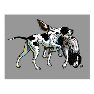 english pointer and setter postcard