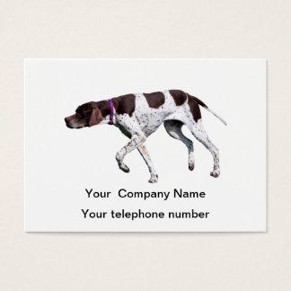 English Pointer dog beautiful photo business card