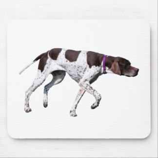 English Pointer dog beautiful photo, gift Mouse Pad