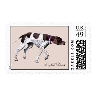 English Pointer dog beautiful photo, postage