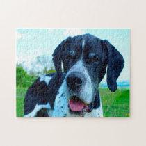 English Pointer Dog. Jigsaw Puzzle