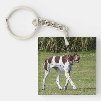 English Pointer hunting dog beautiful photo gift Keychain
