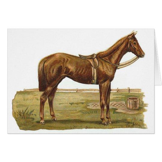 English Racehorse Card